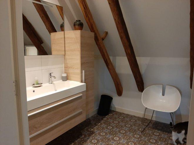 Badkamer van bed and breakfast Meppel - De Noord